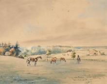 Baron Karl André Reille Paris, 1886 - Cerelles, 1974 Chevaux au pré Aquarelle