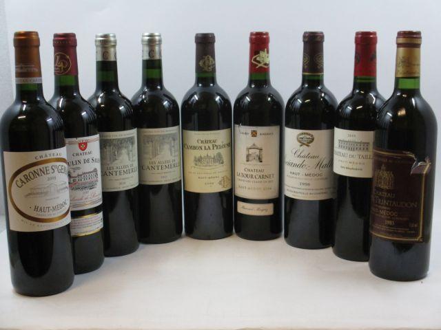 9 bouteilles  1 bt : CHÂTEAU CAMBON LA PELOUSE 2009 Haut Médoc 1 bt :  LES ALLEES DE CANTEMERLE 2010 Haut Médoc 1 bt :  LES ALLE...