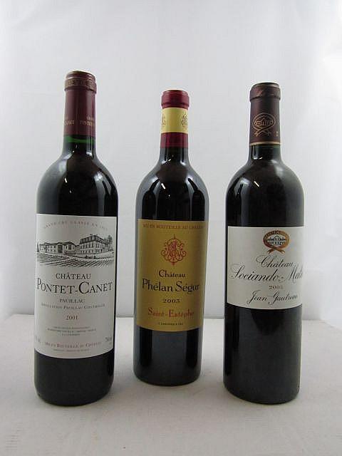 10 bouteilles 4 bts : CHÂTEAU PHELAN SEGUR 2003 Saint Estèphe