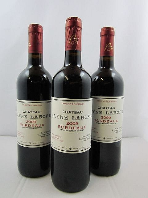 12 bouteilles CHÂTEAU MAYNE LABORIE 2009 Bordeaux