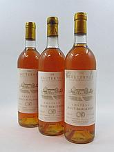 9 bouteilles CHÂTEAU HAUT BERGERON 1986 Sauternes (base goulot
