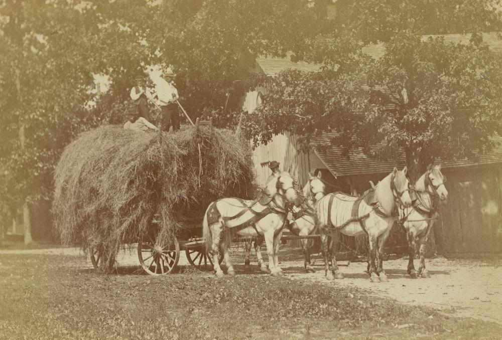 Antique Photograph SCHREIBER & SON The Last Load, Philadelphia, 19th C.