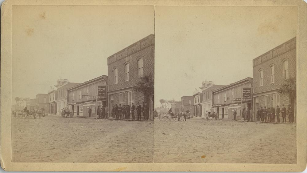 Antique Real Photo Stereoview Eustis Florida