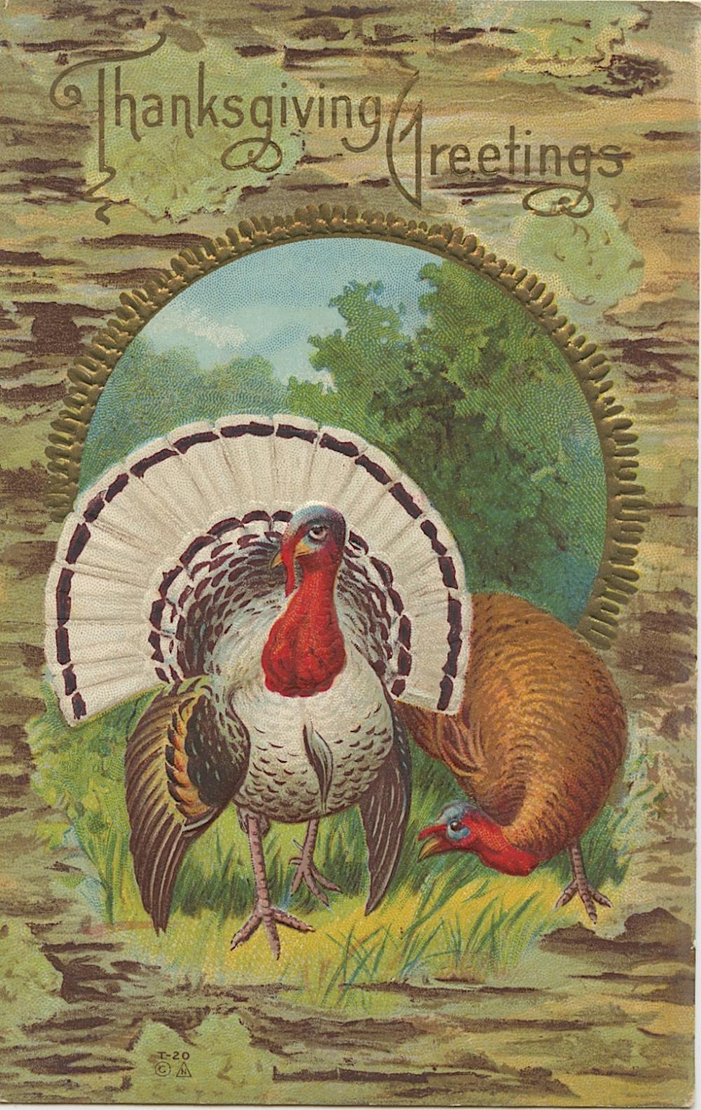 Antique Vintage Rare Postcard Thanksgiving