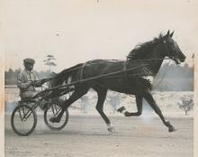 Silver Photo Hope Horse Show, Hambletonian, 1937