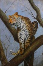 Oil on canvas painted in Africa with Leopard, 1950's