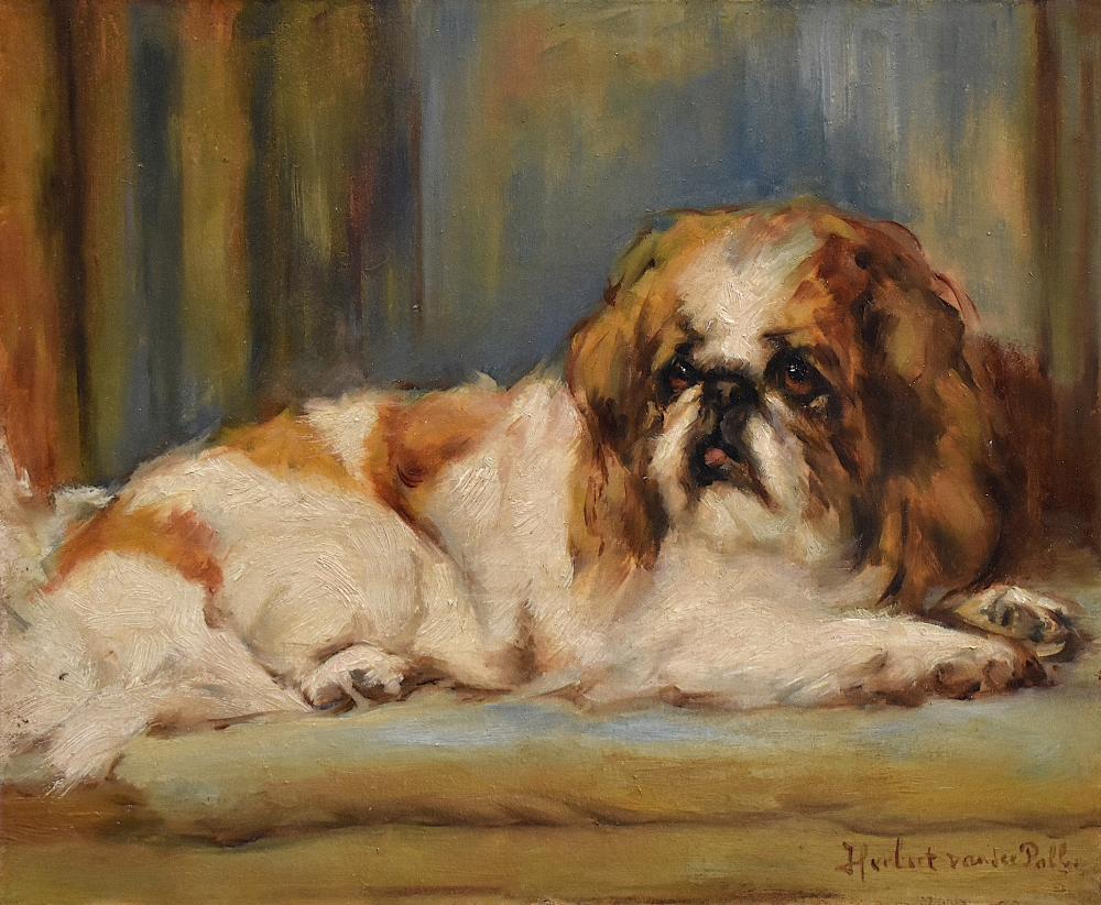 Herbert van der Poll (1877-1963) Oil Painting King Charles Spaniel