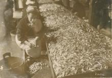 Gelatin Press Photo Labor Preparing Sardines, Paris 1913