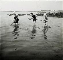 Antique Stereo Glass Bretagne Shrimp Fishing, 1910s
