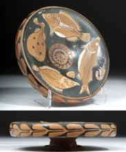 Superb Greek Apulian Pottery Fish Plate