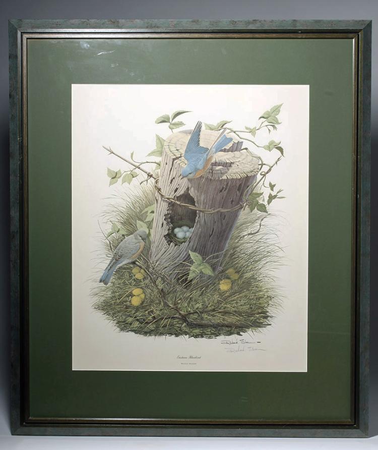 Signed Richard Sloan Eastern Bluebird Lithograph