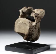 Mammoth Vertebrae Found in Alaska - 40,000 Years Old