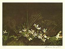 ANDREW WYETH [d'apres] - May Day