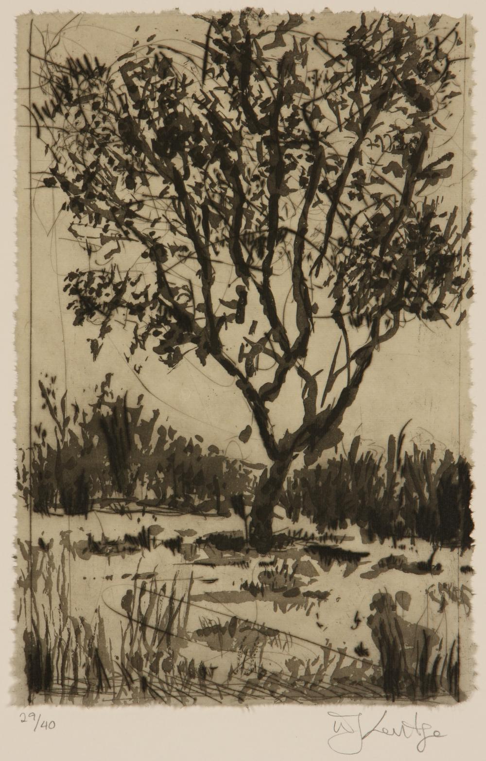 William Kentridge (South Africa 1955-) Tree