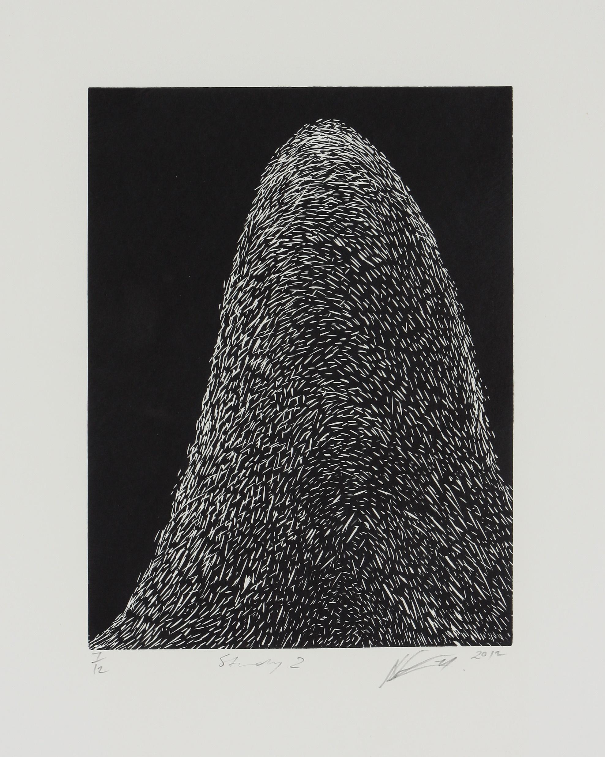 Nandipha Mntambo (Swaziland 1982-) Study 2, 2012