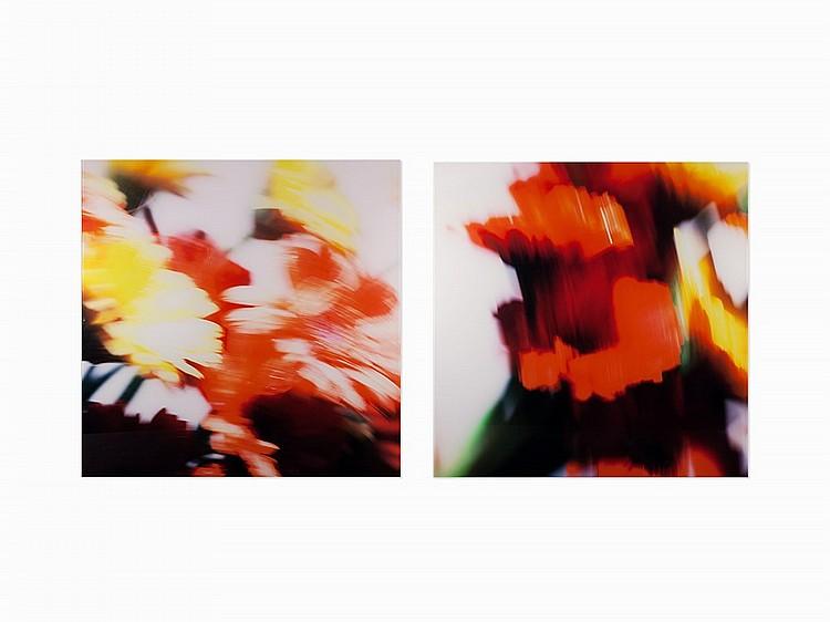 Robert Dutesco, FL-12 and FL-10, 2 Chromogenic Prints, 2007