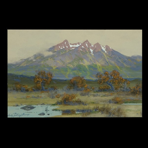 Charles Partridge Adams, Colorado Rockies