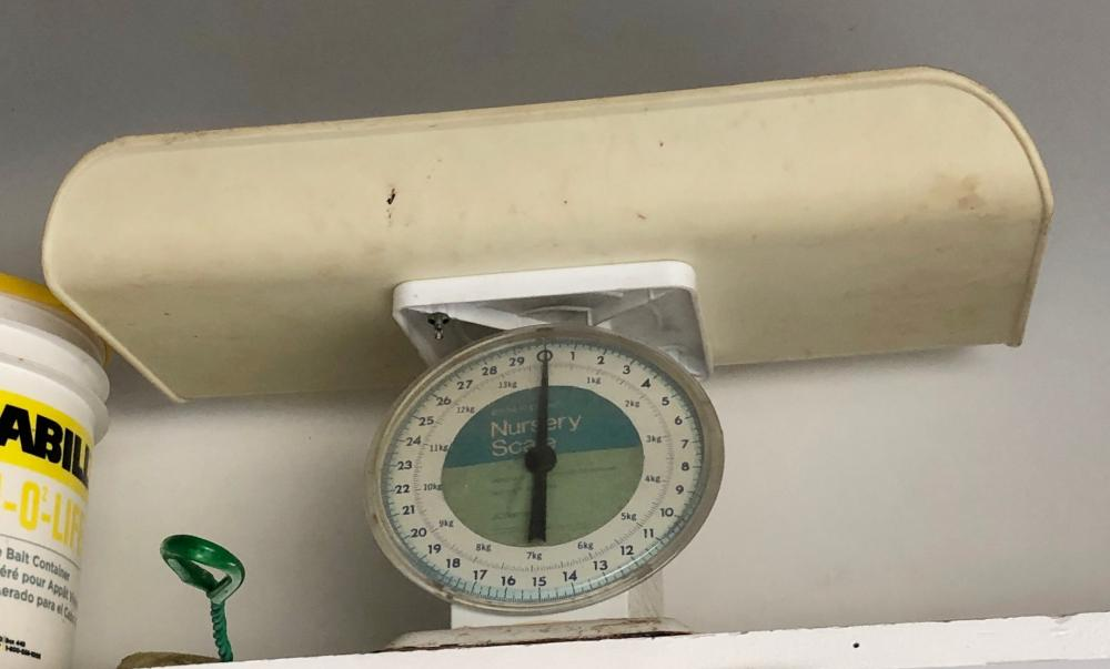 Lot 229: Baby Scale