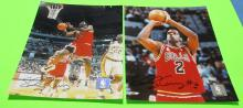2 Eddy Curry  #2  Autographed Chicaco Bulls Photo