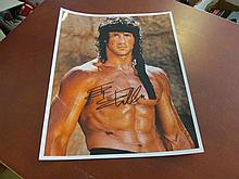 Sly Stallone Autographed Photo