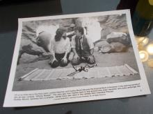 Dudley Moore Hand Signed Photo