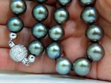 GIA TAHITIAN BLACK LIPPED OYSTER GRAY PEARL NECKLACE