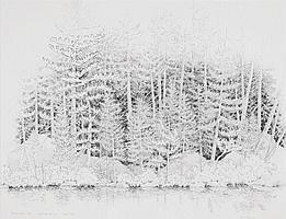 Alan Bray - 'Sunrise Pond, Borestone Mountain, Oct. '04'