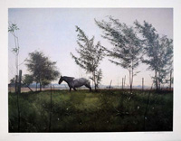 ARTIST: William Nelson TITLE: Horse & Meadow