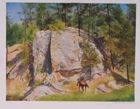 ARTIST: William Nelson TITLE: Cleft Rock