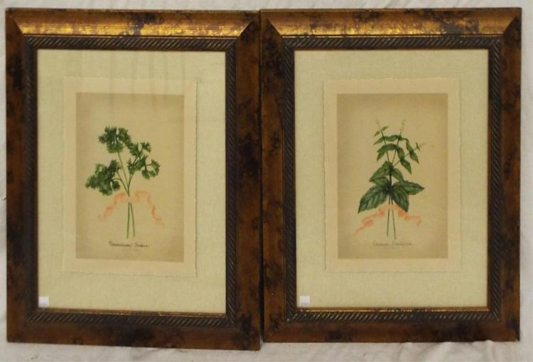 Pair Of J. Goldberger Botanical Prints