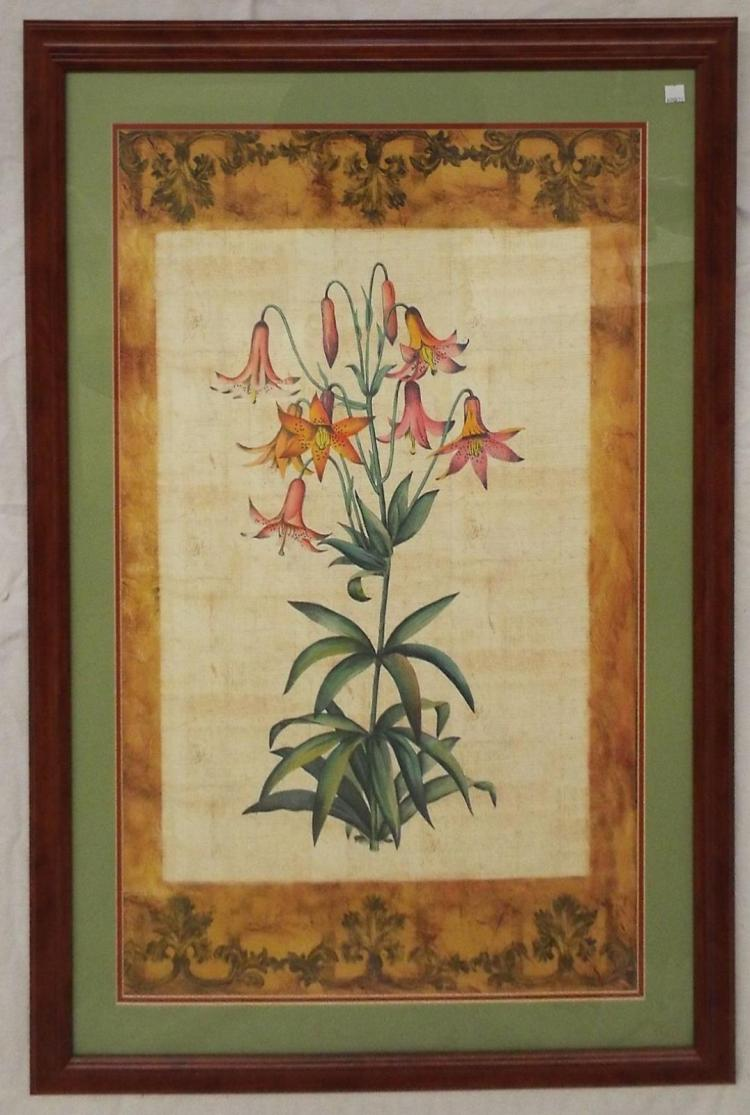 Framed Print Of Flower