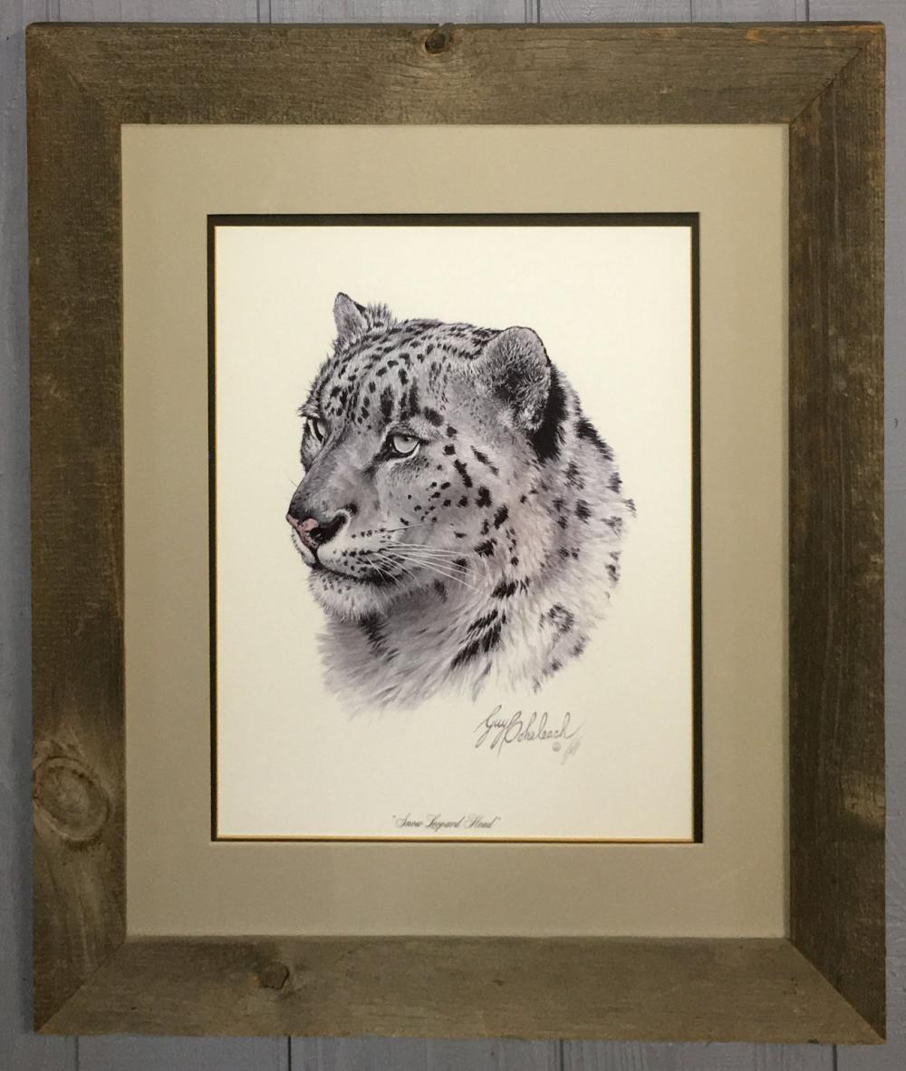 Guy Coheleach Print, Snow Leopard Head