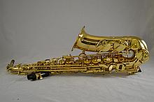 Sky USA Saxophone in double case