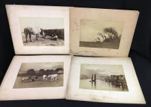 Group Of 4 Photographs