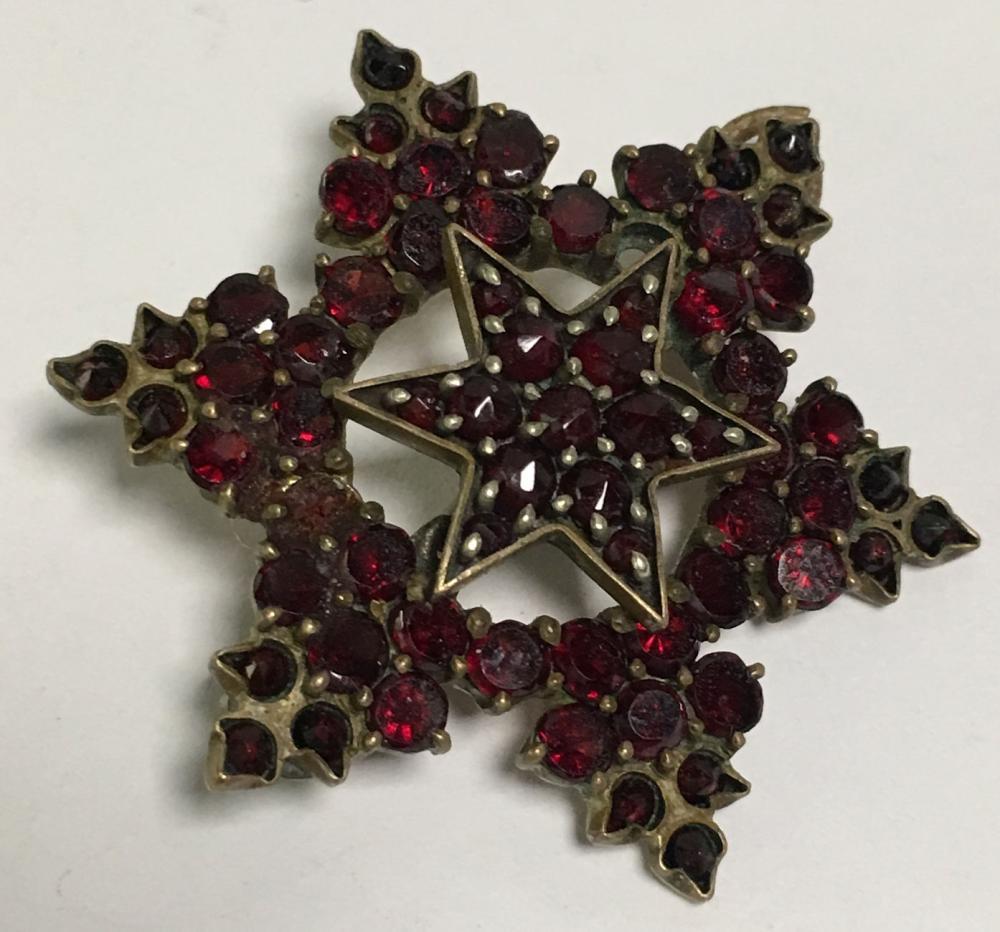 Garnet Gold Filled Star Brooch