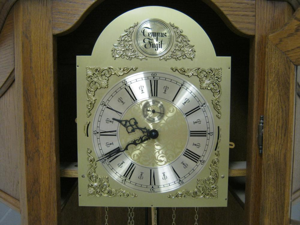 TEMPUS FUGIT LIGHTED GRANDFATHER CLOCK MADE IN GERMANY 31
