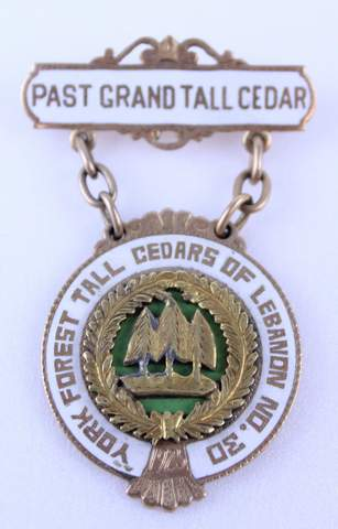 GEORGE GRAFF PAST GRAND TALL CEDARS JEWEL PIN 1925