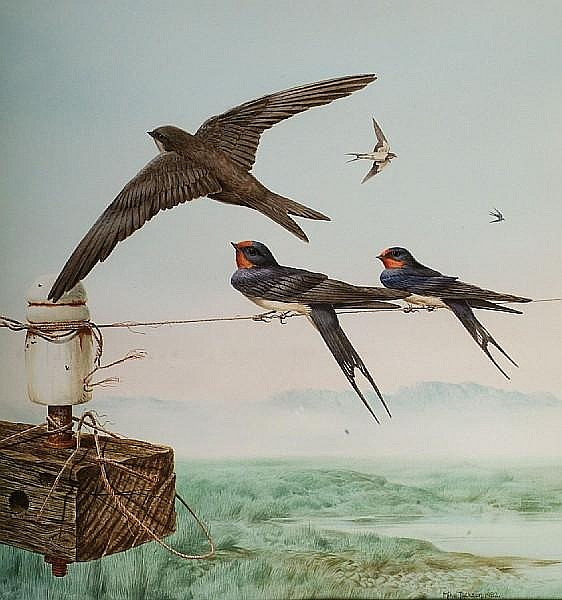 Michael Jackson (British, 1961) Swallows and house martin gathering on a telephone wire,