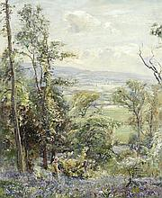 AR HERBERT F. ROYLE (BRITISH, 1870-1958) View from the bluebell wood signed 'H.R
