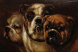 Joseph (Edouard J.) Stevens (Belgian, 1819-1892) Study of three bulldogs