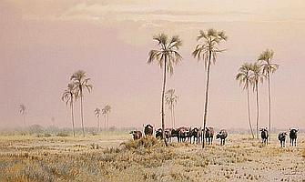 Kim Donaldson (South African, born 1952) Buffalo at Etosha