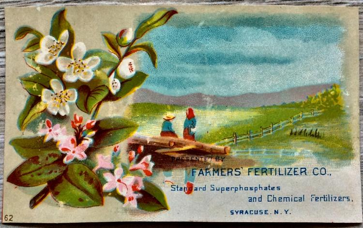 ANTIQUE 19th Century Color Chromolithograph Advertising Card 2 1/2 inches high X 4 1/2 inches wide