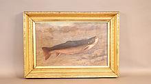 Portrait of a fish by Lovis Ewer
