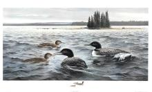 """MAYNARD REECE """"OFFSHORE LUNCH-COMMON LOONS"""" LTD. ED. SIGNED PRINT"""