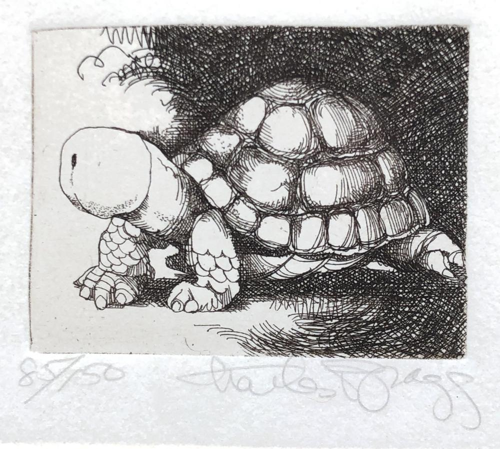 """CHARLES BRAGG """"TURTLE"""" SIGNED ETCHING"""