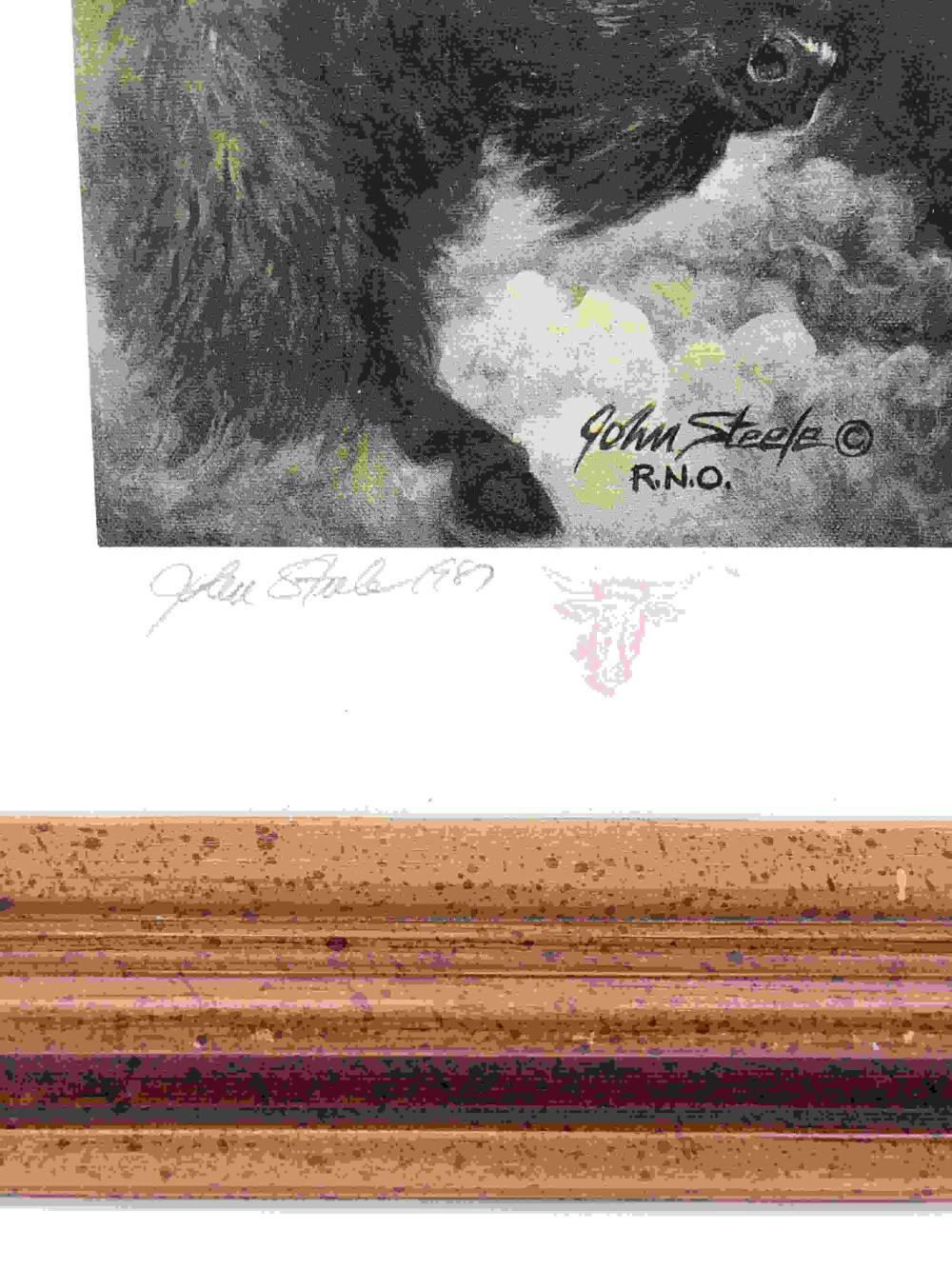 JOHN STEELE ART PRINT IRON EYES CODY ANTI-POLLUTION CAMPAIGN 22.5 X 17