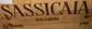 12 Bouteilles SASSICAIA - TENUTTA SAN GUIDO 1999 Caisse bois d'origine. Original wood case.