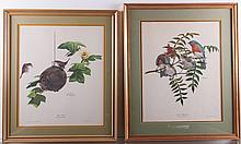Ray Harm Framed Wildlife Art Pair