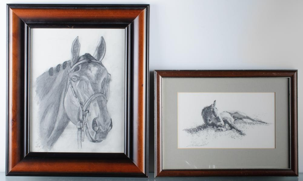 Tucker Smith Foal Print & Horse Drawing