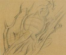 Frank Hinder (1906-1992) Bearded Dragon 1946 Pencil on paper